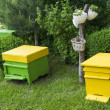 Yellow beehives — Foto Stock