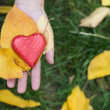 Hand holding Red heart and autumn leafs — Stockfoto