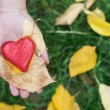 Hand holding Red heart and autumn leafs — Stock Photo