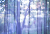 Purple transparent curtain background — Stock Photo