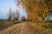 Country, autumn road — Stock Photo