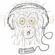 Monkey listens the music — Stock Photo
