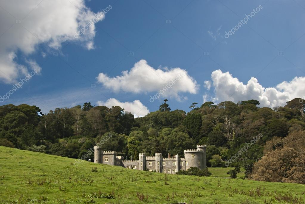 A Nineteenth Century Country House built in the Style of a castle with woodland under a blue sky — Stock Photo #12735087