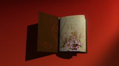 Animated book with turning pages,flying butterflies — Stock Video