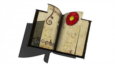 Animated opening blank book with decorative painting flowers and alpha channel — Stock Video
