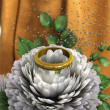 Isolate on white holiday and wedding background with chrysanthemum and ring — Stok fotoğraf