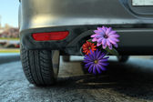 Ecologic fuel concept with flowers — Stock Photo