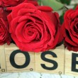 ������, ������: Three burgundy roses on a white background and the words out of