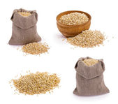 Quinoa grains — Stock Photo