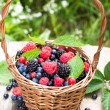 Basket of various berries — Stock Photo #29745773