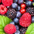 Berries mix closeup — Stock Photo #30340167