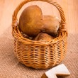 Small basket of mushroom — Stock Photo