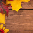 Leaves on wooden background — Stock Photo #33218607