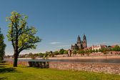 Cathedral of Magdeburg at river Elbe, Germany — Stock Photo