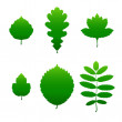 Green leaf silhouettes — Stock Vector