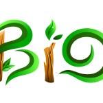Green bio word — Stock Vector