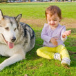 Guard dog watches baby play — Stock Photo