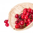 Fresh berries for table — Foto Stock