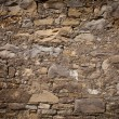 Ancient stone wall texture wil mold — Stock Photo #31657761
