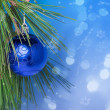 Blue Christmas ball on a branch — Stock Photo