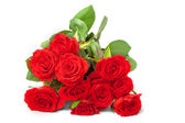 Bunch of Scarlet Roses — Foto Stock