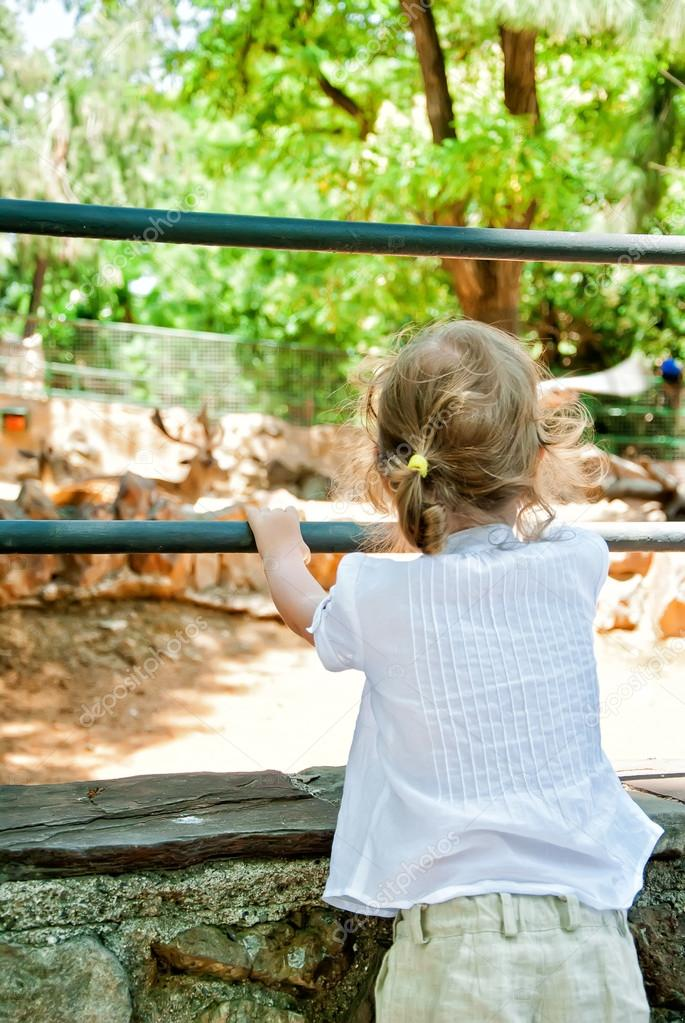 Little girl looking at animals in the zoo — Stock Photo #12176821