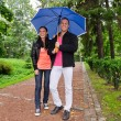 Stock Photo: Young couple walking in the park under umbrella