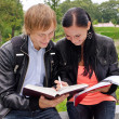 Two students studying outdoors — Stock Photo