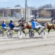 Stockfoto: Harness racing. Racing horses harnessed to lightweight strollers.