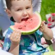 Stock Photo: Portrait of boy eating watermelon in park