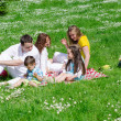 Company of friends with children having fun on a picnic — Stock Photo