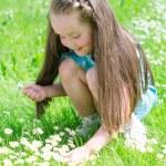 Little girl gathering flowers in summer park — Stock Photo #26886739