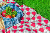 Picnic basket with fruits on a blanket in the park — Stock Photo