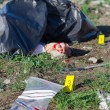 Stock Photo: Crime scene with male corpse and evidence markers