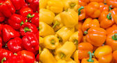 Collage of bright red, yellow and orange paprika — Stock Photo