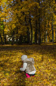 Little girl collects fallen autumn leaves. From the back — Stock Photo