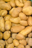 Lots of eco potatoes in supermarket — Stock Photo