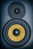 Professional music studio monitor. Close-up. — Foto Stock
