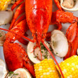 Boiled lobster dinner with clams and corn - Stock Photo