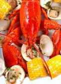 Kokt hummer middag med musslor och majs — Stockfoto