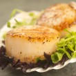 Stock Photo: SeScallop with greens in scallop shell