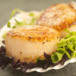 Sea Scallop with greens in a scallop shell — Stock Photo #28364649