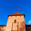Trakai, Lithuania: tower of castle with National flag — Stock Photo