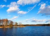大きくなりすぎた森林湖畔のビュー — Stock fotografie