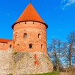 Stock Photo: Trakai, Lithuania: old defensive tower