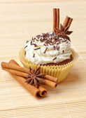 Chocolate cupcake with whipped cream and cinnamon — Stock Photo