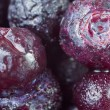 Ripe frozen blueberries — Stock Photo