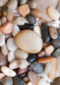 Colored round sea pebbles — Stock Photo