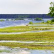 Broad river flooded green meadow — ストック写真