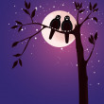 Romantic card with birds — Stock Vector